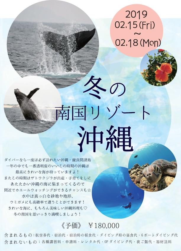 2018.02沖縄予価